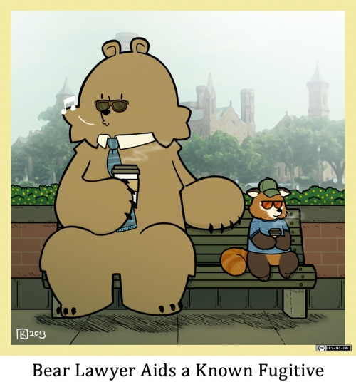 Bear Lawyer Aids a Known Fugitive