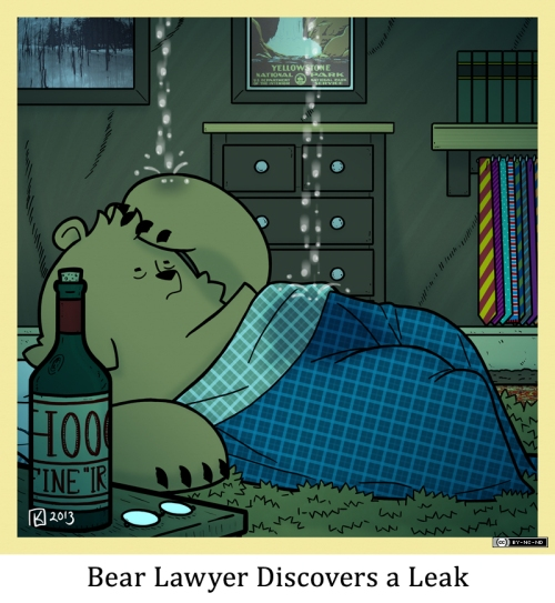 Bear Lawyer Discovers a Leak