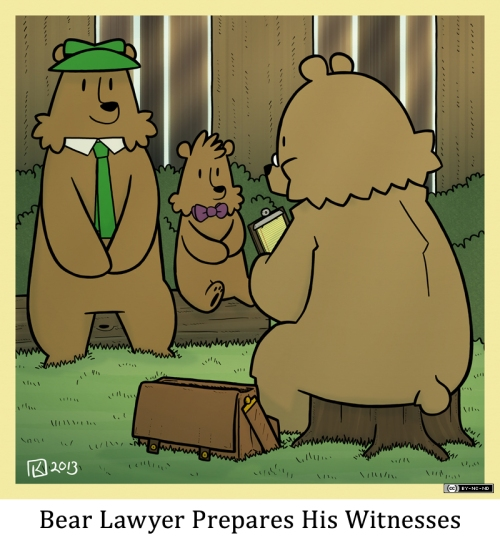 Bear Lawyer Prepares His Witnesses