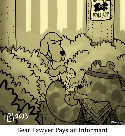 Bear Lawyer Pays an Informant